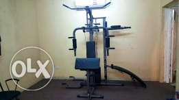 Full body workout machine + free belly fat reducing machine