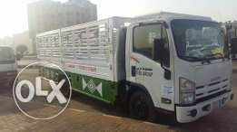 Dyna truck for rent 6mters 5meter and 4mtrs.