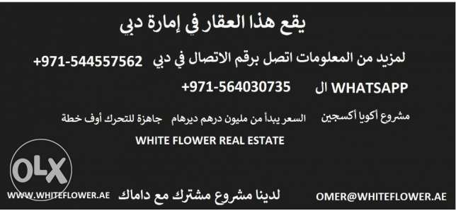 4 bedroom villa in akoya oxygen dubai fully furnished completion 2018