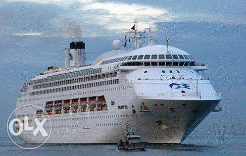 Princess Cruises Ships عفيف -  2