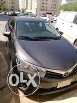 Toyota Corolla 2014 in excellent condition