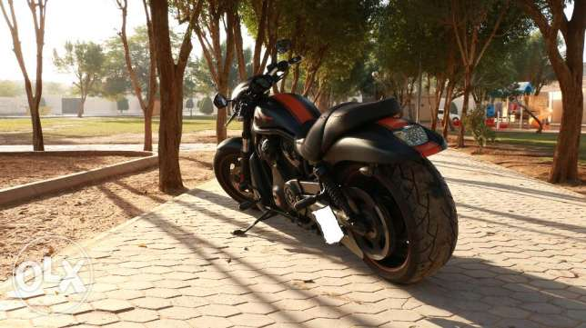 Harley Davidson Night Rod Model 2008 الرياض -  4