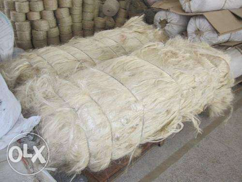 Sisal Fibre of UG Grade and SSUG Best Price and Quality Hot Sale