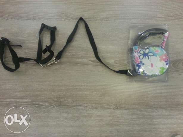 Leash for dog or cat new