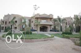 Luxury Ambassadorial Property Equestrian Mansion Villa in Egypt