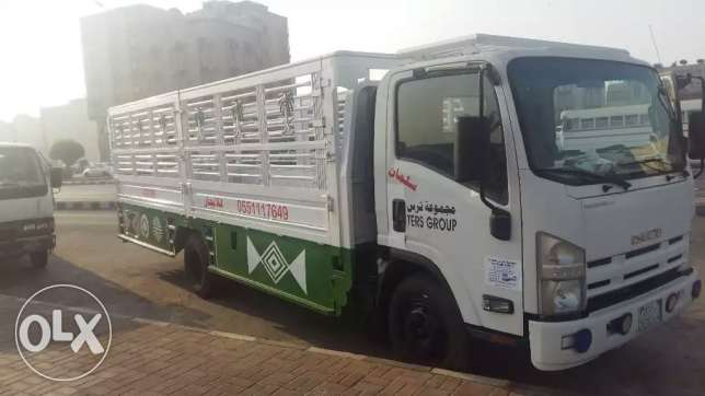 Dyna truck for rent الجبيل -  2
