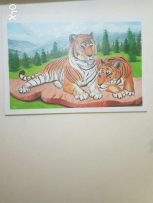 Tiger decor