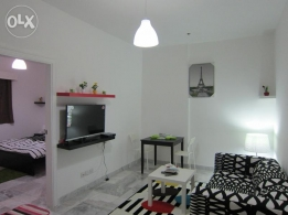 New 2 BDR Fully furnished Apartments for rent