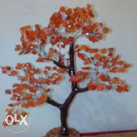 Red hakik agate tree