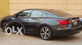 2016 Nissan Maxima SV (Options),Tinted Windows,5-Year Warranty,Cash